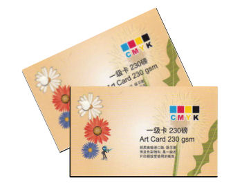 Offset Namecard Printing on Artcard 260gs - Double Sided - 1000pcs